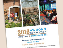 2016 AWHONN Convention Logo and Identity
